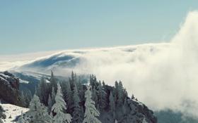 Обои зима, лес, облака, горы