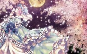 Обои девушка, ночь, дерево, магия, бабочка, спокойствие, сакура