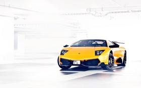 Обои жёлтый, Lamborghini, ламборджини, yellow, Murcielago, LP670-4, ламборгини