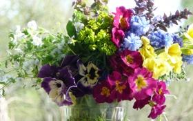 Обои окно, букет, цветы, солнце, лето