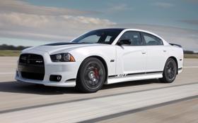 Обои авто, белый, скорость, Dodge, SRT8, Charger