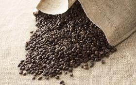 Обои кофе, зерна, мешок, coffee