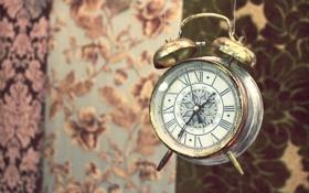 Обои время, часы, будильник