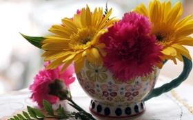 Картинка макро, цветы, чашка