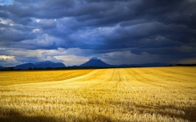 Картинка поле, небо, облака, скошено