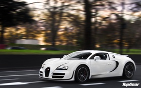 Картинка white, Bugatti Veyron, top gear, Super Sport, телепередача, топ гир, 16.4