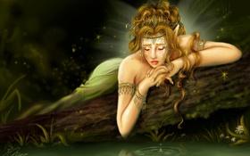 Обои грусть, вода, девушка, фея, бревно, слеза