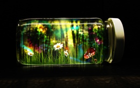 Обои Пузырек, Life in a Jar, Жизнь, Life