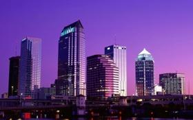 Обои фиолетовый, город, Ночь, небоскрёбы