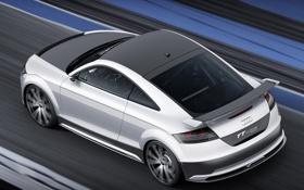 Обои машина, Concept, Audi, ауди, тюнинг, концепт, ultra quattro