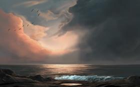 Картинка море, волны, вода, облака, закат, птицы, берег