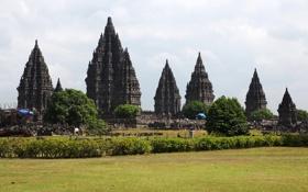 Обои поле, трава, деревья, Индонезия, кусты, храмы, Prambanan