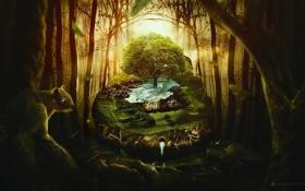 Картинка лес, вода, креатив, дерево, белка, desktopography