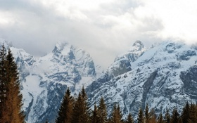 Картинка пейзаж, горы, деревья, туман