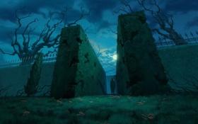 Обои листья, ночь, луна, фигура, Лабиринт, кусты