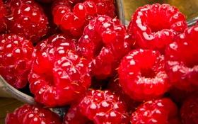 Обои berries, малинка, Malinka, ягоды