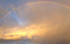 Картинка небо, облака, радуга, биплан