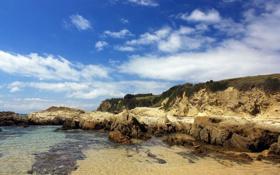 Обои природа, берег, залив