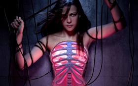 Обои провода.грудная, девунка, клетка, позвоночник