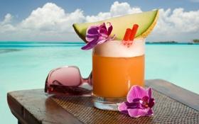 Обои сок, очки, трубочка, орхидея, дыня