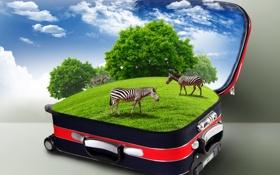 Картинка трава, облака, креатив, чемодан, кусты, зебры