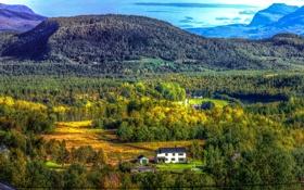 Картинка лес, небо, деревья, горы, природа, дом, норвегия