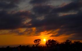 Картинка небо, солнце, облака, деревья, закат, горизонт