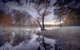 Обои осень, природа, река, берег, созерцатель