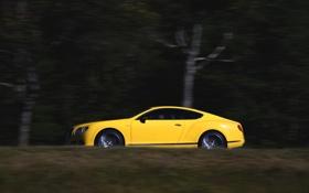 Картинка Авто, Bentley, Continental, Желтый, Машина, Вид сбоку, В Движении