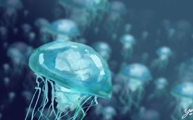 Обои синева, арт, медузы