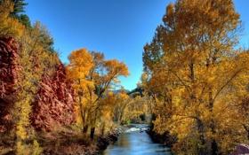 Обои осень, деревья, скалы, речка