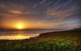 Картинка песок, море, пляж, вода, закат, природа, растение
