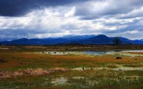 Картинка небо, вода, горы, тучи, болото