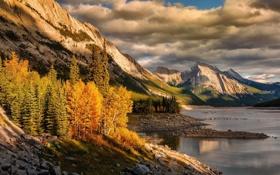 Картинка лес, осень, небо, облака, озеро, деревья, природа