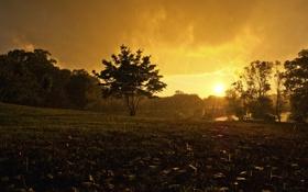 Обои вода, капли, природа, фото, дождь, настроение, пейзажи