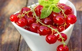 Картинка ягоды, миска, красная смородина, redcurrant