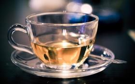 Обои зеленый, чай, утро, ложка, кружка, чашка, напиток