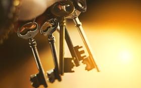 Картинка ключи, много, разные