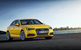 Обои Audi, ауди, седан, quattro, желтая, Yellow, TFSI
