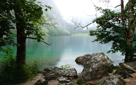 Обои река, берег, деревья, фото, природа, вода