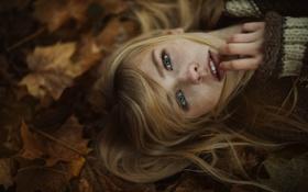 Картинка листья, девушка, губки, Jesse Herzog, Annika