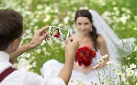 Обои трава, цветы, природа, женщина, букет, невеста, свадьба