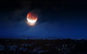 Картинка небо, свет, ночь, город, луна, дома