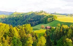 Обои лес, холмы, дом, деревья, Tessin, луга, поля