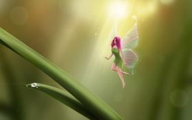 Обои девушка, капли, лист, крылья, фея, арт, травинки