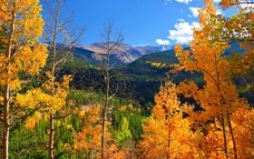 Обои горы, облака, осень, небо, деревья
