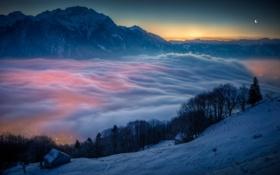 Картинка лес, небо, облака, закат, горы, город, луна