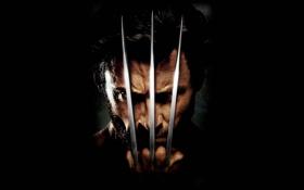 Обои Wolverine, росомаха, когти, ножи, металл, X-Men
