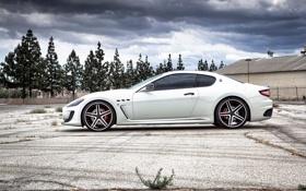 Картинка белый, деревья, Maserati, профиль, диски, GranTurismo, MC Stradale