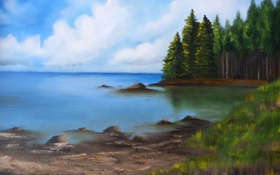Обои лес, трава, озеро, берег, деревья, хвойные, природа